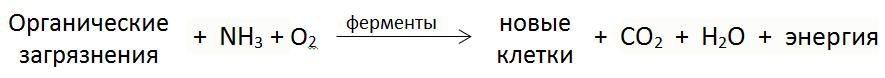 Подробный принцип работы станции топас